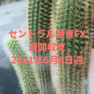 【セントラル短資FX】運用収支(2021年6月6日週)