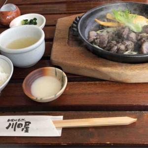大阪府富田林市 平日でも予約必須な人気鶏料理店『川田屋』でランチを食べた話