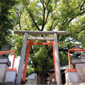 阿倍野区桃ヶ池町にある『股ヶ池明神』に再訪。龍神、行場、不動明王。