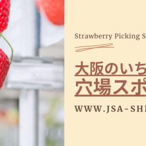 いちご狩りの季節はいつ?大阪の美味しい穴場やおすすめ農園紹介