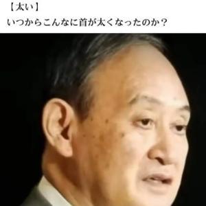 「警戒すべきはリバウンド」 緊急事態宣言解除で菅首相記者会見