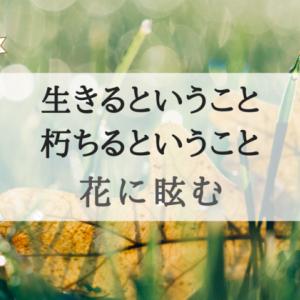 """『花に眩(くら)む』艶やかな表現と""""美しく朽ちてゆく""""ということに心をつかまれる"""