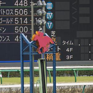 【競馬回顧】函館スプリントステークス&エプソムカップ〜連敗脱出!しかし難解なレースでした〜