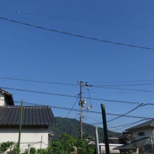 広島は青空が大変綺麗です/好い天気になりました/2020/6/15
