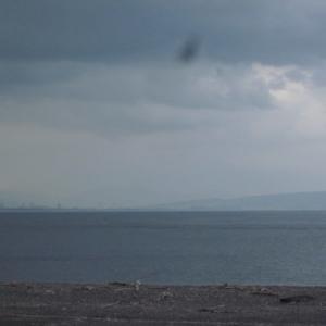 石津海岸公園 雨