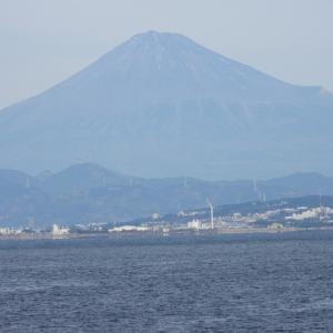 1月11日 富士山