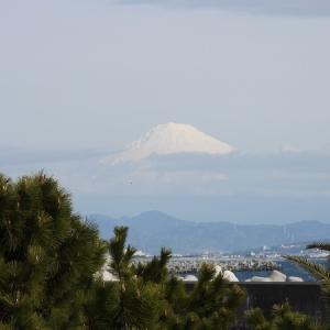 1月26日 富士山