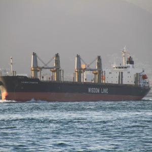 DAIWAN CHAMPION(バラ積専用船)