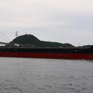 FRONTIER ISLAND(バラ積専用船)