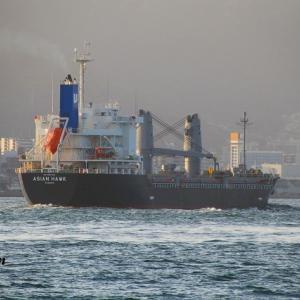ASIAN HAWK(一般貨物船)