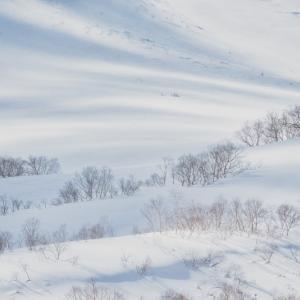 明日が積雪のピークで明後日が最低気温のピークだって?