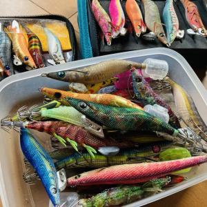 【エギング初心者必見】漁師がおすすめするエギの選び方・使い方を徹底解説!