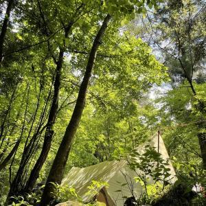 【夏のキャンプ 暑さ対策12選】暑い夏も便利グッズで快適にキャンプしよう♬