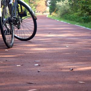 子どもと自転車で遊びたい!おすすめの公園はどんなところ?
