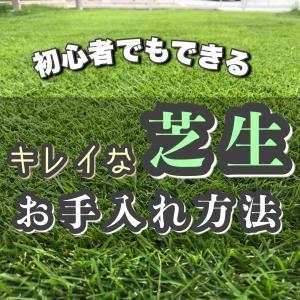 芝生初心者が参考にできる知識をまとめた百科事典|品種・お手入れ・オススメ道具