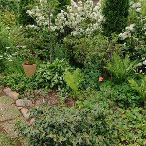 里山のお庭へ