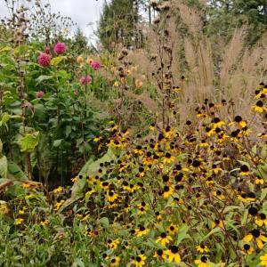 秋の蓼科恵泉ガーデンへ