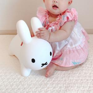 【ブルーナ】生後6ヶ月の娘が喜んだアイテム