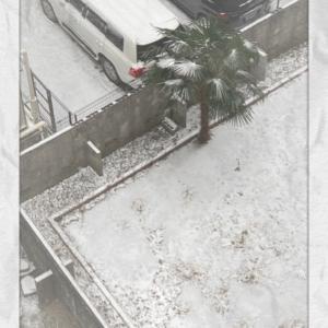 雪景色のように心も真っ白になれたらいいな