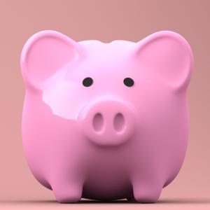 【貯金ゼロからマイホーム計画①】2021年1月の収入と貯金額