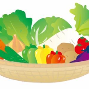 【つぶやき】野菜は取らなくてもサプリでよくない?