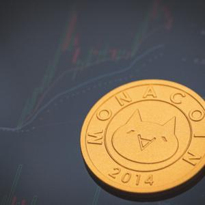 【2021年版】モナコイン(MONA)の将来性 今後の期待【仮想通貨】