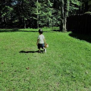 コロナ禍における幼児との過ごし方。二度目の緊急事態宣言にも動じない。