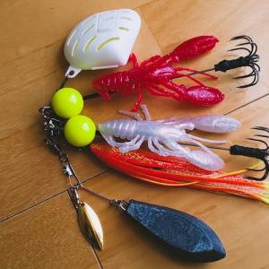 タコ釣りボール スターターセット(オンラインショップ購入)タコ釣りボールが家に届いた!!!