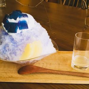 Nova 珈琲と焼菓子 (ノヴァ)カフェ:紫陽花のかき氷 季節感ある彩りも美しいかき氷!