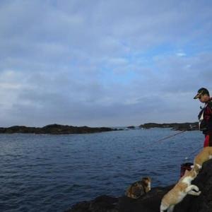 2021.10.12 【城ヶ島釣行】今回は正午に早上がりしました。