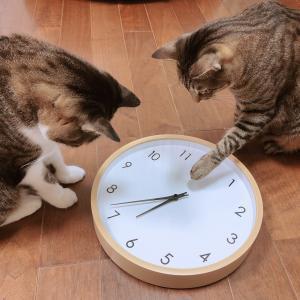 【楽天お買い物マラソン】掛け時計 Moi