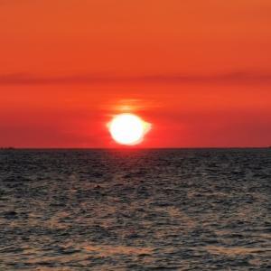 山陰の海と海の幸