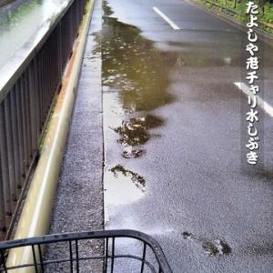 梅雨もまた よしや老チャリ 水しぶき