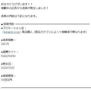 ブログで240円の初収益発生しました!