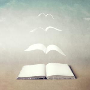 本を読むということのメリット。
