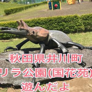 【秋田県井川町】国花苑(ゴリラ公園)で遊んだよ♪
