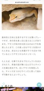 白いトカゲ→ヤモリ?と蛇のお話・・・( ;∀;)