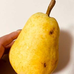 今日の果物