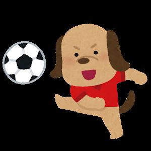 【1月18日更新!】2021年沖縄サッカーキャンプはどうなる?情報をまとめました!【J1編】