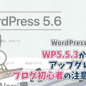 WordPressを5.5.3から最新版5.6にアップグレード!初心者が気をつけるべき点は?