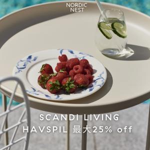 【HAVSPIL 最大25% OFF】オーシャンブル―の北欧食器🌊