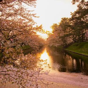春と夏の弘前 弘前さくらまつり・弘前ねぷたまつり