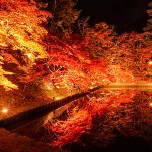 秋と冬の弘前 弘前紅葉祭り・弘前城雪燈籠まつり