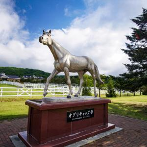 【日高・新冠】競走馬のふるさとを訪ねる【北海道】