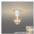 【2021年5月下旬】絶対採用すると決めている照明