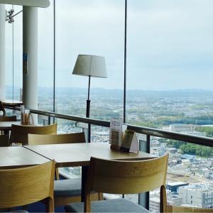 景色が一望できる県庁のカフェ。紅茶のソフトクリームを食べに行きました【花水木】