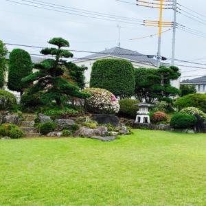 ホールケーキが無料!?日本庭園が素敵なカフェでランチをいただきました