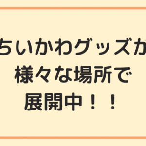 """【ちいかわ】100円ショップやゲームセンターで手に入れた""""ちいかわグッズ""""をご紹介します"""