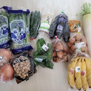 OGK KABUTOのフルフェイスヘルメットの在庫なさすぎ!!!大船市場で野菜を買う。