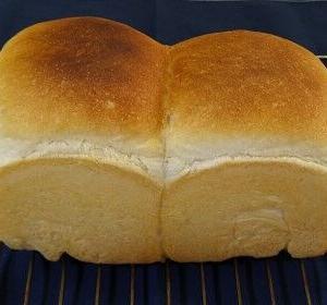 本日は山型食パン